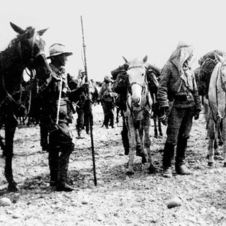 7 August 1915 light horsemen Turkish cavalry qld